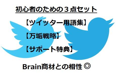 brain-twitter3