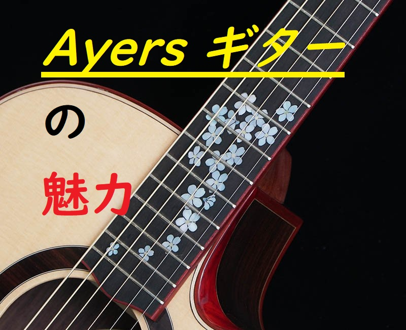 arers-guitar-vietnum